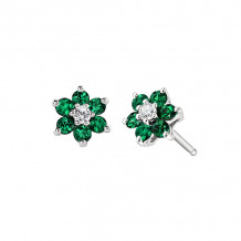 David Connolly 14k White Gold Emerald Earrings - 6880EMW