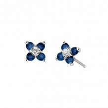 David Connolly 14k White Gold Sapphire Earrings - 6581SAW