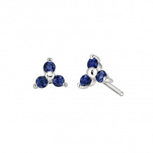 David Connolly 14k White Gold Sapphire Earrings - 6564SAW